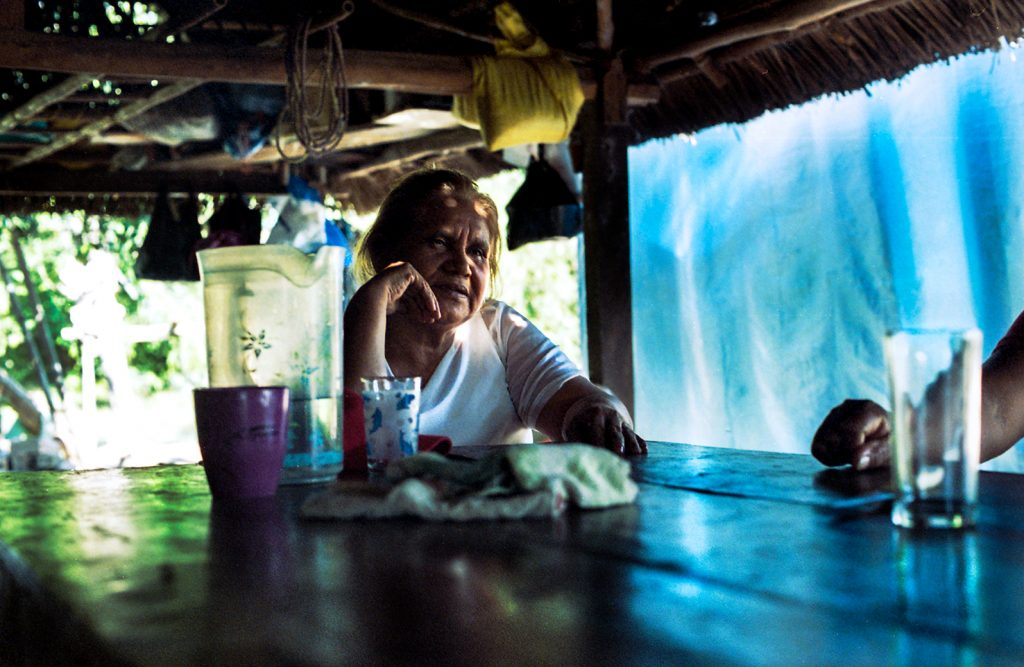 quarantine journeys amazzonia